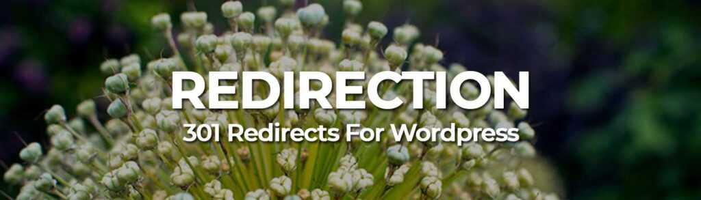 Redirection - WordPress SEO Plugin
