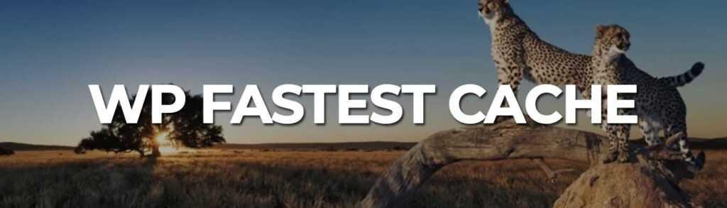 WP Fastest Cache - WordPress SEO Plugin